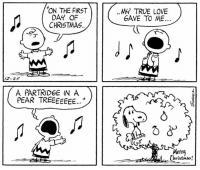 """Memes, 🤖, and Pear: ON THE FIRST  DAY OF  CHRISTMAS.  EIE  12-25  A PARTRIDGE IN A  PEAR TREEEEEEE...""""  MY TRUE LOVE  GAVE TO ME  Merry  L Christmas! This strip was published on December 25, 1964. 🎅🎄🎁 🎶 Merry Christmas!"""
