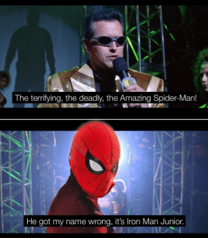 Get out there you moron: ON  The terrifying, the deadly, the Amazing Spider-Man!  He got my name wrong, it's Iron Man Junior. Get out there you moron
