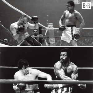"On this day in 1975, Chuck Wepner survived 15 rounds with Muhammad Ali and inspired Sylvester Stallone to write 'Rocky.'  Ali: ""I have been so great in boxing they had to create an image like Rocky, a white image on the screen, to counteract my image in the ring."": On this day in 1975, Chuck Wepner survived 15 rounds with Muhammad Ali and inspired Sylvester Stallone to write 'Rocky.'  Ali: ""I have been so great in boxing they had to create an image like Rocky, a white image on the screen, to counteract my image in the ring."""