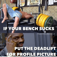 Be smart and don't let the poverty bench let u down: ON1313  ELEI  wwwer equipment  IF YOUR BENCH SUCKS  Powerlifting Motivatio  PUT THE DEAD LIFT  FOR PROFILE PICTURE Be smart and don't let the poverty bench let u down