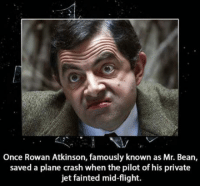 BeanLAD: Once Rowan Atkinson, famously known as Mr. Bean,  saved a plane crash when the pilot of his private  jet fainted mid-flight. BeanLAD