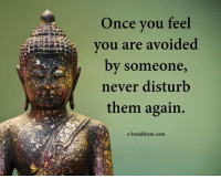 Memes, Buddhism, and Never: Once you feel  you are avoided  by someone  never disturb  them again.  e-buddhism com
