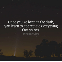 Once you've been in the dark, you learn to appreciate everything that shines. - ⬇️ Who or what do you appreciate? ⬇️: Once you've been in the dark,  you learn to appreciate everything  that shines.  INFLUENCIVE Once you've been in the dark, you learn to appreciate everything that shines. - ⬇️ Who or what do you appreciate? ⬇️