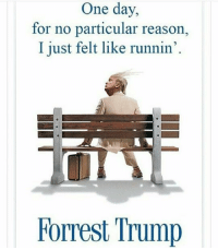 Memes, Trump, and Reason: One day,  for no particular reason,  I just felt like runnin  Forrest Trump This is great! 😂
