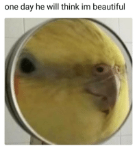Beautiful, One, and One Day: one day he will think im beautiful