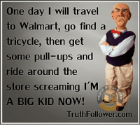 Memes, Walmart, and I'm a Big Kid Now: One day I will travel  to Walmart, go find a  tricycle, then get  some pull-ups and  ride around the  store screaming I'M  A BIG KID NOW!  TruthFollower.com