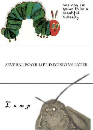 me🦋irl by Saph390 MORE MEMES: one day i'm  oing to be a  butterfly  SEVERAL POOR LIFE DECISIONS LATER me🦋irl by Saph390 MORE MEMES