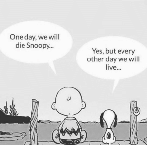 Now is all that matters.: One day, we will  die Snoopy...  Yes, but every  other day we will  live... Now is all that matters.