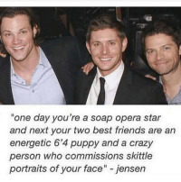 """Memes, Puppies, and Opera: """"one day you're a soap opera star  and next your two best friends are an  energetic 6'4 puppy and a crazy  person who commissions skittle  portraits of your face"""" jensen 6'4 puppy 😂"""
