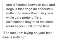 """Clinginess: one difference between cats and  dogs is that dogs do absolutely  nothing to mask their clinginess  while cats pretend it's a  coincidence they're in the same  room as you 97% of the time  """"The fact I am laying on your face  means nothing"""""""