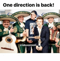 The boys are back!: One direction is back!  95-106  95  TAL  EMP  @1dlovesmaya The boys are back!