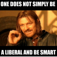 LIBeRalS aRE DUmM: ONE DOES NOT SIMPLY BE  A LIBERAL AND BE SMART LIBeRalS aRE DUmM