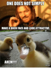 The only acceptable duck face!: ONE DOES NOT SIMPLY  MAKE ADUCK FACE AND LOOK ATTRACTIVE  AHEM!!!!  Beth H Dodd The only acceptable duck face!