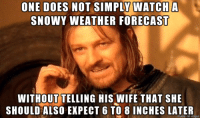 one does not simply walk into mordor: ONE DOES NOT SIMPLY MATCH A  SNOWY WEATHER FORECAST  WITHOUTTELLING HIS WIFE THAT SHE  SHOULD ALSO EXPECT 6 TO 8 INCHES LATER