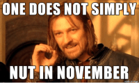 Imgur, One, and Made: ONE DOES NOT SIMPLY  NUT IN NOVEMBER  made on imgur the cruelty