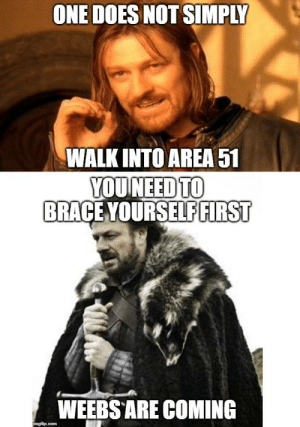 We know this to be true.: ONE DOES NOT SIMPLY  WALK INTO AREA 51  YOUNEED TO  BRACE YOURSELF FIRST  WEEBS ARE COMING  imgflip.com We know this to be true.