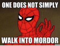 http://t.co/jnIolLm7VI: ONE DOES NOT SIMPLY  WALK INTO MORDOR http://t.co/jnIolLm7VI