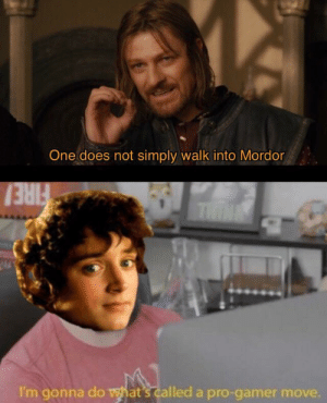 Sam, the real MVP tho: One does not simply walk into Mordor  THINE  I'm gonna do what's called a pro-gamer Sam, the real MVP tho