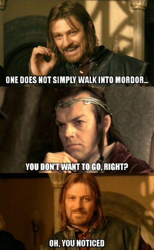 you noticed...: ONE DOES NOT SIMPLY WALK INTO MORDOR  YOU DON'T WANT TO GO, RIGHT?  OH, YOU NOTICED you noticed...