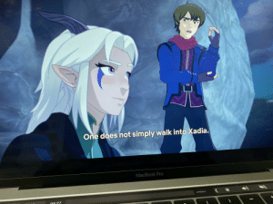 """Found this in """"the dragon prince"""".: One does not simply walk into Xadia.  MacBook Pro  04:27 Found this in """"the dragon prince""""."""