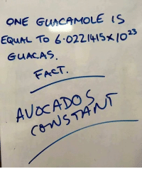Guacamole, Chemist, and One: ONE GuACAMOLE S  Equhl To 6.0221415 </023  FACT fact of the day 🥑🥑