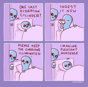 'pleasant nonsense': ONE LAST  HYDRATION  CYLINDER?  INGES T  IT N OW  PLEASE KEEP  THE CORRIDOR  ILLUMINATE D  IMAGINE  PLEASANT  NONSENSE  OK  NATHANWPYLE 'pleasant nonsense'