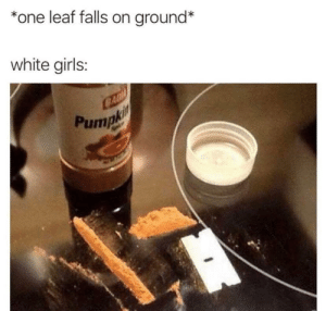 It's almost that time of the year: *one leaf falls on ground*  white girls:  CAD  Pumpki It's almost that time of the year