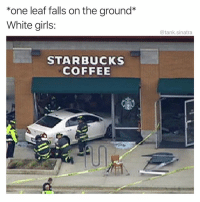 Funny, Girls, and Starbucks: *one leaf falls on the ground*  White girls  @tank.sinatra  STARBUCKS  COFFEE DO YOU HAVE A MOBILE ORDER FOR CHRISTINA?!