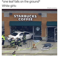 Girls, Memes, and Starbucks: *one leaf falls on the ground*  White girls:  @tank.sinatra  STARBUCKS  COFFEE Me! 😂