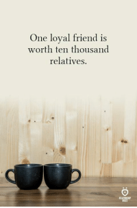 True, One, and Friend: One loyal friend is  worth ten thousand  relatives,  ELATIONSHI  RULES True!