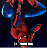 Memes, 🤖, and One: ONE MORE DAY