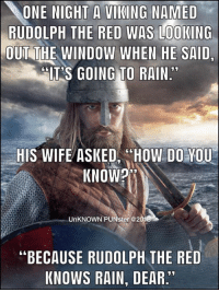 "ONE NIGHT A VIKING NAMED  RUDOLPH THE RED WAS LOOKING  OUT THE WINDOW WHEN HE SAID  IT S GOING TO RAIN  13  HIS WIFE ASKED HOW DO YOU  KNOWP  N.  UnKNOWN PUNster@2  ""BECAUSE RUDOLPH THE RED  KNOWS RAIN, DEAR"" What's worse than raining cats and dogs?  Hailing taxis.  #UnKNOWN_PUNster"