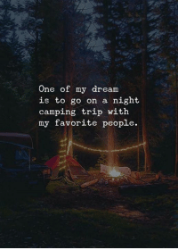 Dream, One, and Trip: One of my dream  is to go on a night  camping trip with  my favorite people.