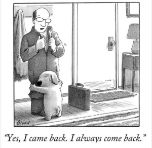 One of my favorite New Yorker cartoons (by Harry Bliss): One of my favorite New Yorker cartoons (by Harry Bliss)