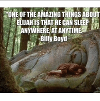 This is ADORABLE elijahwood billyboyd frodobaggins amonhen thelordoftherings lordoftherings lotr thefellowshipofthering frodo pippin peregrintook: ONE OF THE AMAZING THINGS ABOUT  , ELUAHTS THAT-HE CAN SLEEP  Bily Bovu This is ADORABLE elijahwood billyboyd frodobaggins amonhen thelordoftherings lordoftherings lotr thefellowshipofthering frodo pippin peregrintook