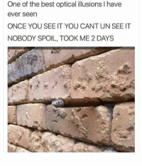 Lol, Memes, and Best: One of the best optical illusions I have  ever seen  ONCE YOU SEE IT YOU CANT UN SEE IT  NOBODY SPOIL, TOOK ME 2 DAYS Lol 😂