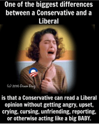True...: One of the biggest differences  between a Conservative and a  Liberal  (c 2016 Dinon Daz  is that a Conservative can read a Liberal  opinion without getting angry, upset,  crying, cursing, unfriending, reporting,  or otherwise acting like a big BABY. True...