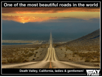 Memes, California, and 🤖: One of the most beautiful roads in the world  Death Valley, California, ladies & gentlemen!  SAY I think I've bigger goals than Leh Ladakh :O