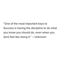 "Success, One, and Unknown: ""One of the most important keys to  Success is having the discipline to do what  you know you should do, even when you  dont feel like doing it."" - Unknown"