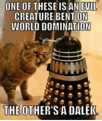 Memes, Evil, and 🤖: ONE OF  THESE IS AN EVIL  CREATURE ON  WORLD DOMINATION  THE OTHER'S A DALEK
