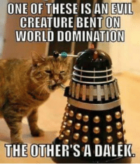 Memes, Evil, and 🤖: ONE OF THESE IS AN EVIL  CREATURE ON  WORLD DOMINATION  THE OTHER'S ADALEK