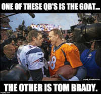 Some of u will argue but it's because you're stupid  #OrangeCrush: ONE OF THESEQBSISTHE GOAT  THE OTHER IS TOM BRADY.  ingflip.com Some of u will argue but it's because you're stupid  #OrangeCrush