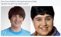 Dank, Drake, and Friends: One of your friends is Josh peck and one is Drake  Tag them but don't say which is which