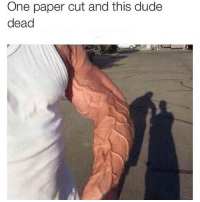 One paper cut and this dude  dead That shits nasty 🙅🙅🙅 ratchetmemes ratchet memes meme funny ghetto comedy sotrue thot swag nigga 3hunna lol lmao rap drake black follow smile laugh smh joke nochill memeoftheday dailymeme hilarious picoftheday bangbang