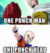 Memes, One-Punch Man, and 🤖: ONE PUNCH MAN  ONE  PUNCH DEAD Sad but funny
