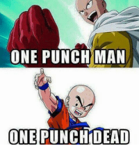 Memes, One-Punch Man, and 🤖: ONE PUNCH MAN  ONE  PUNCHIDEAD