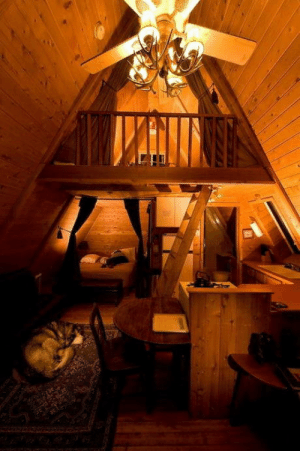 One, Room, and Cabin: One room A-frame cabin