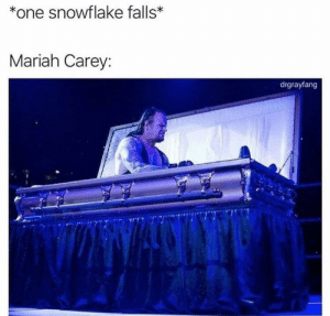 Meirl by xxxdeportation MORE MEMES: *one snowflake falls*  Mariah Carey:  drgrayfang Meirl by xxxdeportation MORE MEMES
