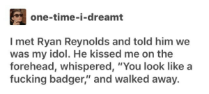 "Ryan Reynolds: one-time-i-dreamt  I met Ryan Reynolds and told him we  was my idol. He kissed me on the  forehead, whispered, ""You look like  fucking badger,"" and walked away."