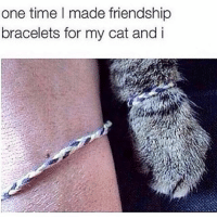 Beautiful, Happy, and Time: one time I made friendship  bracelets for my cat and i Happy Internationalwomensday to all the mothers out there. Including myself.... a proud mother of a beautiful cat! Go us!!! We're invincible!! 🖤
